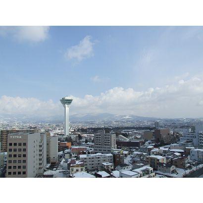 洋室から五稜郭タワーを撮影