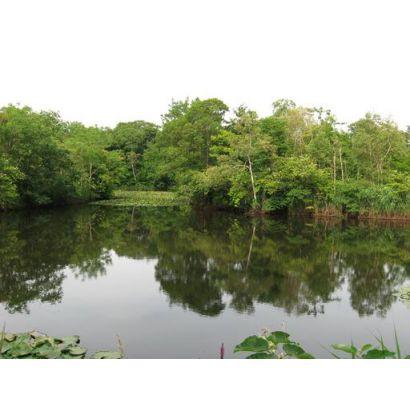 湖畔まで徒歩1分です!