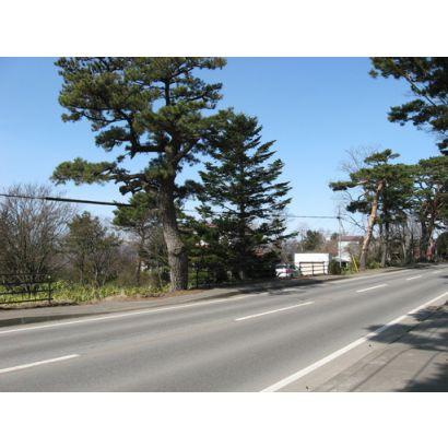 前面道路の赤松街道