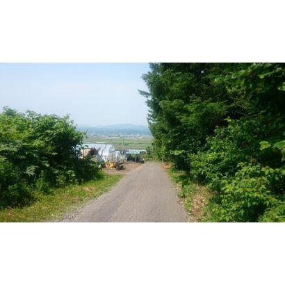 北側町道からは大野平野が一望できます。