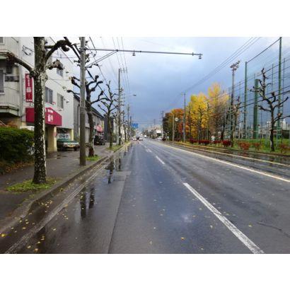 ◎前面道路、柏木町方向
