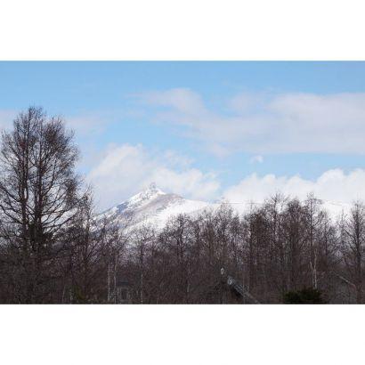 敷地から見える駒ヶ岳