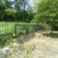 敷地北側のフェンスと樹木です。